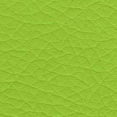 PU1 K429 apple green