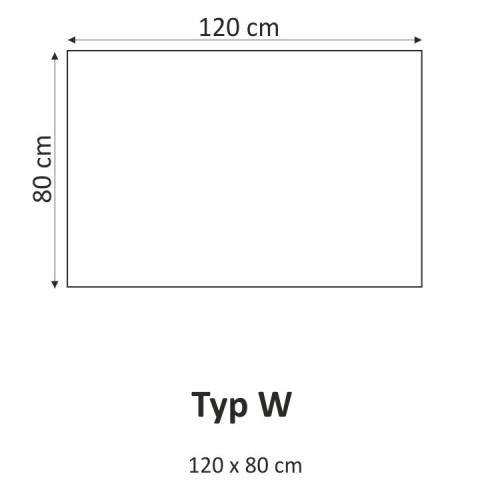 Obraz F003493F TYP W
