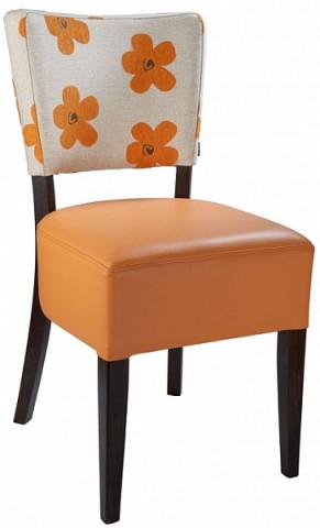 Židle 313 761 Isabela - dubová - Ilustrační fotografie - dřevo viz vzorník