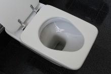Samozřejmé, ale velice důležité - WC sedátko