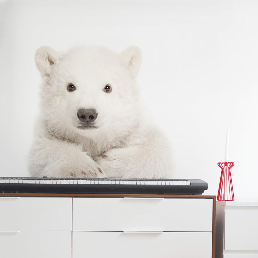 Forclaire Dekorace na zeď - lední medvídek 58x55cm