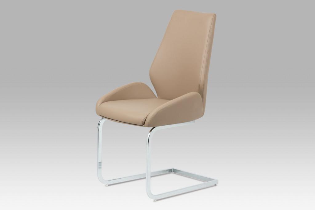 Jídelní židle HC-702