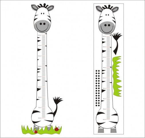 Meřítko vzrůstu č. 04 - zebra
