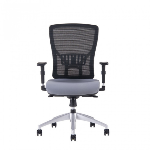 Kancelářská židle HALIA MESH BP - 2625, šedá č.2