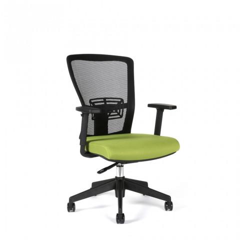 Kancelářská židle THEMIS BP - TD-20, zelená