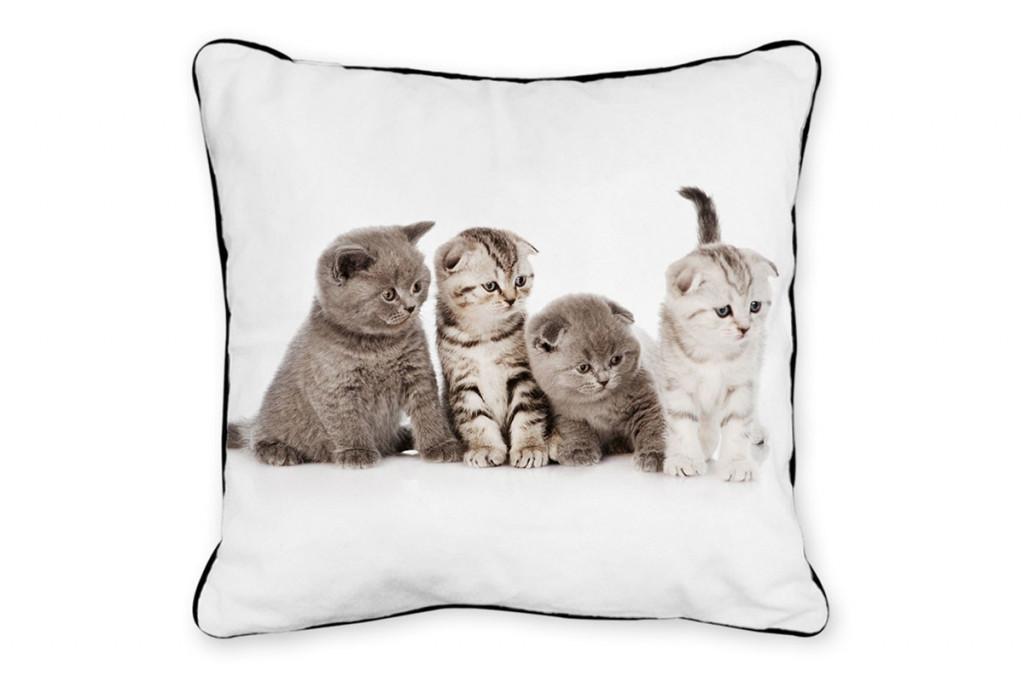 Polštář koťata POL519